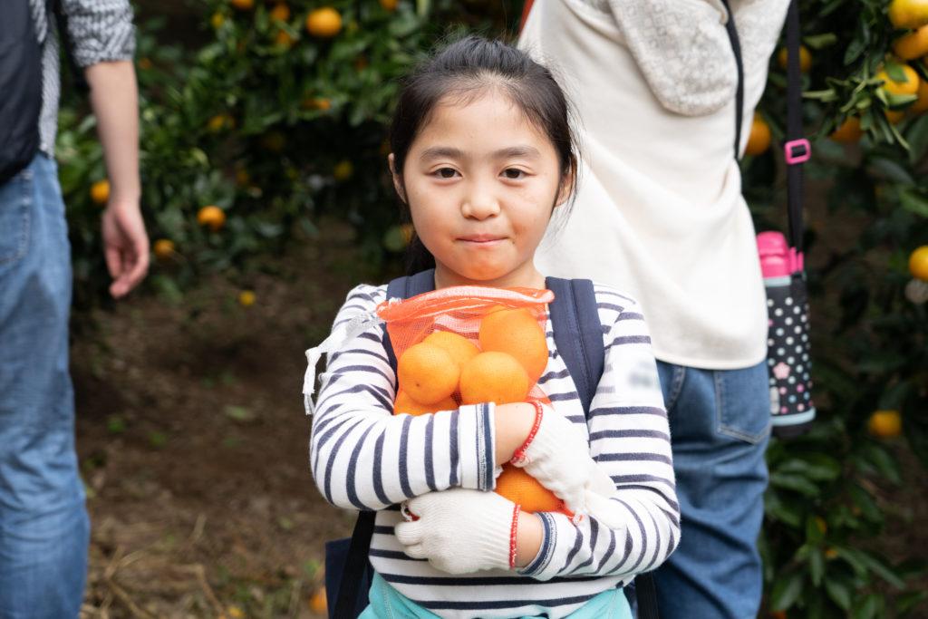 柑謝祭(かんしゃさい)イベントレポート!大人気のみかんの収穫体験イベントを取材してきました!の画像