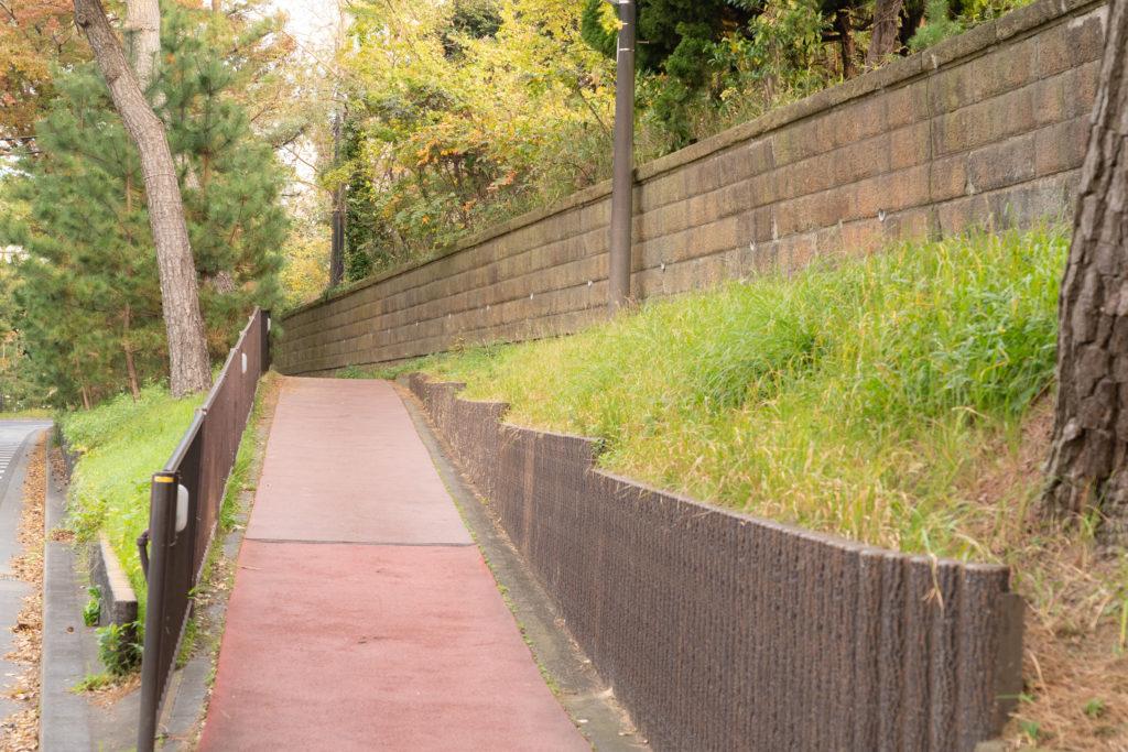 国道一号線の松並木と石垣
