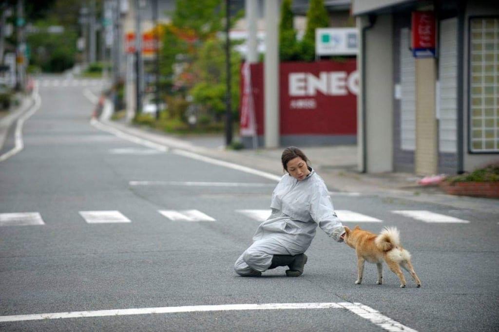 福島での救出活動の様子