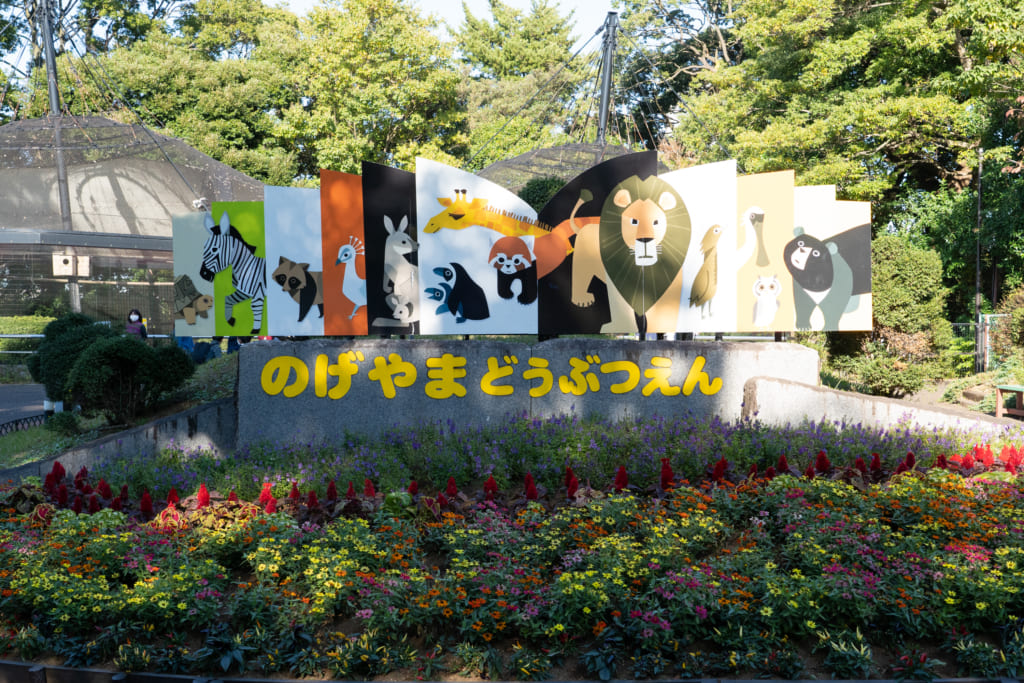 """都会にいながら自然や動物たちにふれあえる!""""身近な動物園""""がコンセプトの横浜市立野毛山動物園! 動物をとおして命の大切さを伝えていきたいと語る古賀里帆(こが りほ)さんインタビューの画像"""